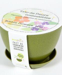 Trio de fleurs comestibles - Mano Verde