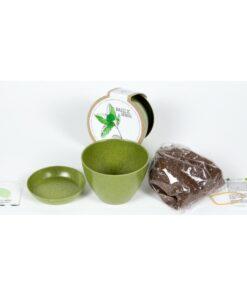 Mini-Pot - Mano Verde