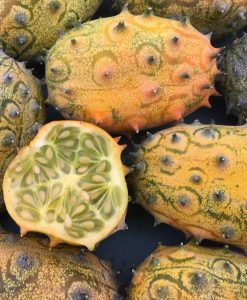 semences melon kiwano bio semis biologique - kiwano jelly melon organic seeds