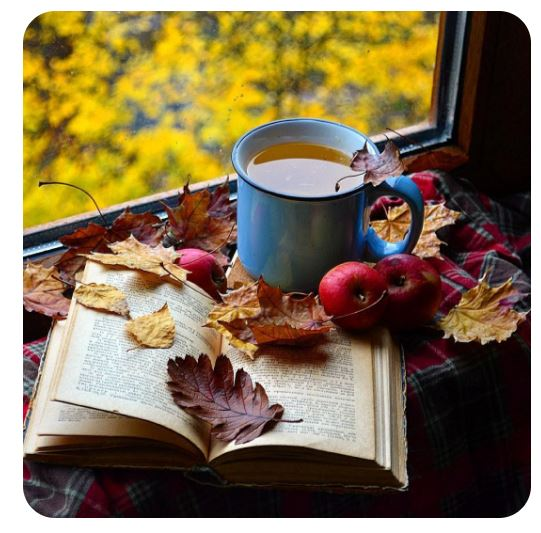 tisane article automne