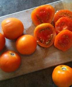 tomate semences biologiques bio tomato organic seeds