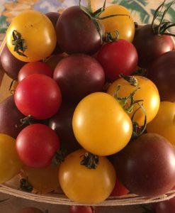 tomates cerises mix cherry tomato