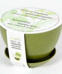 Trio d'herbes aromatiques - Mano Verde